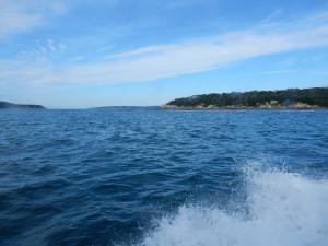 山ヤ、海を渡る。