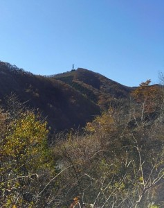 近くに丸山が見えます。