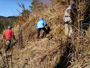 斜面が急で鍬を振り上げることができません。難しい。