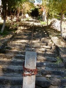 この長~い階段を上って本殿に行きます。