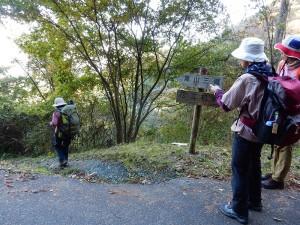 標識に導かれ黒山三滝方面に山道に入ります。