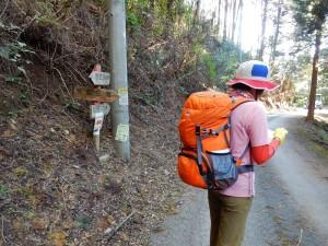 水場から又車道を少し歩き、三滝方面に入ります。