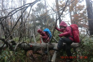 倒木を乗り越えて・・・これ以上はカメラもしまってひたすら歩く。