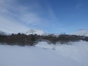 青い空と雪とのコントラストがとても綺麗でした