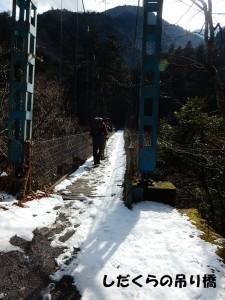 しだくらの吊り橋です。途中まで行ってみました。