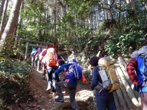 琴平神社を目指して鳥居をくぐります