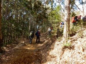 整備された山道を三室山へ向かいます。