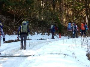 林道は雪で真っ白です。何故かここ50mくらいだけです。
