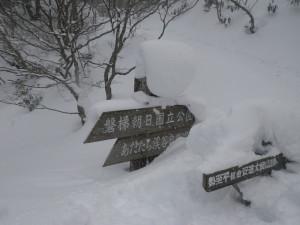 標識もすっかり雪に埋もれてました